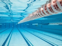 Roissy Pays de France ► Les piscines rouvrent progressivement